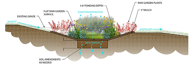 We Are Stormwater Experts | Horsley Witten Group Rain Garden Stormwater Design on rainwater garden design, rose garden design, rose landscape design,